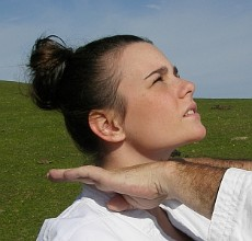 Karate: golpes circulares, uchi waza Big_33221407_0_230-220